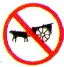 no oxcarts allowed